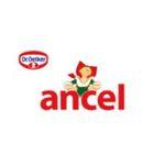 Brand - Ancel