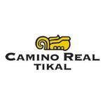 Brand - Camino