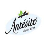 Brand - Antesite