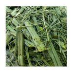 El Guapo -  Shave Grass Herbal Tea Bags Mexican Tea 0012354099265
