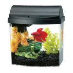 All glass aquarium -  Mini Bow Desktop Kit Black 0015905012058