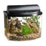 All glass aquarium - Mini Bow 5 Desktop Aquarium Black 0015905177740  / UPC 015905177740