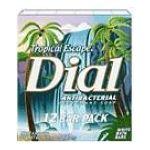 Dial -  Antibacterial Soap Bars 0017000015514