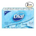 Dial -  Antibacterial Soap Bar Spring Water Bars 0017000029290