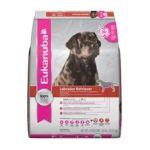 Eukanuba - Labrador Retriever Adult Dog Food 0019014019564  / UPC 019014019564