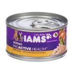 Iams - Proactive Health Canned Kitten Food 0019014043279  / UPC 019014043279