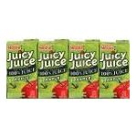 Juicy Juice - Juice Apple 0028000399504  / UPC 028000399504