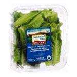 Earthbound Farm -  Organic Heirloom Lettuce Leaves 0032601033118