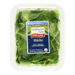 Earthbound Farm -  Salad Mache Mix Organic 0032601900663
