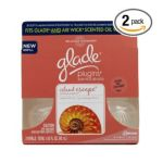 Glade - Relaxing Moments Plugins Scented Oil Refills Island Escape 0046500715297  / UPC 046500715297