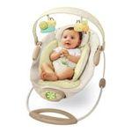 Kids II brands - Bright Starts Ingenuity Automatic Bouncer, Bella Vista 0074451069053  / UPC 074451069053