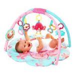 Kids II brands - Bright Starts Petals and Friends Activity Gym 0074451090064  / UPC 074451090064