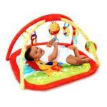 Kids II brands - Bright Starts Lion In The Park Activity Gym 0074451090071  / UPC 074451090071