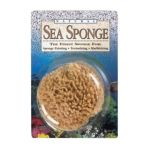 Alvin -  Ss5 Sponge nat wool 5-6in 0076775006042