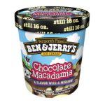 Ben & Jerry's - Chocolate Macadamia Ice Cream 0076840042494  / UPC 076840042494