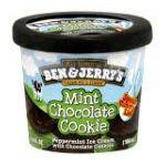 Ben & Jerry's - Ice Cream 0076840043132  / UPC 076840043132