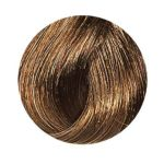 Clairol - Beautiful Collection Semi-permanent Hair Color #11w Honey Brown 0381515801116  / UPC 381515801116