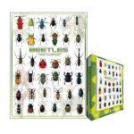 Eurographics -  Beetles Jigsaw Puzzle 0628136600811