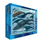 Eurographics -  Whales And Dolphins Jigsaw Puzzle 0628136600828