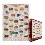 Eurographics -  Turtles And Tortoises Jigsaw Puzzle 0628136630078