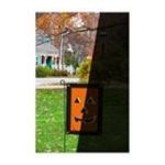 Evergreen Group -  Regular Sized Flag Fiber Optic, Jack O Lantern 0746851596681