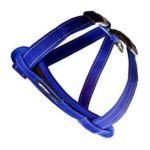Ezydog -  Chestplate Dog Harness In Blue Size-see Chart Below Large:16 27 N 0807203105149