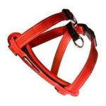 Ezydog -  Chestplate Dog Harness In Red Size-see Chart Below Medium:14.5 23.5 N 0807203105231