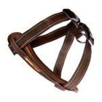 Ezydog -  Chestplate Dog Harness In Chocolate Size-see Chart Below Medium:14.5 23.5 N 0807203105286