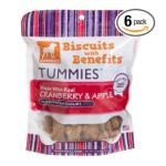 Dogswell -  Dogswell Biscuits With Benefits Tummies Cranberry & Apple Treats For All Dogs Pouches 0884244152929