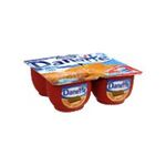 Danette -   creme dessert pot plastique speculoos  4ct meuble refrigere  3033490553760