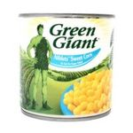 Géant vert -  None 3254471007045