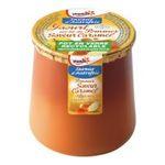 Yoplait - Saveur d'Autrefois - Yaourt sur lit de pommes saveur caramel 3329770014541