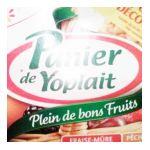 Yoplait - Panier de Yoplait - Yaourt fruits rouges et jaunes 3329770045064