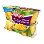 Andros -  Délices de fruits en morceaux -  Délice de fruits exotiques 3608580707288