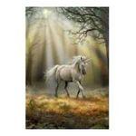 Educa Borras -  Puzzle 1000 pièces Licorne Anne Stoke 8412668144361