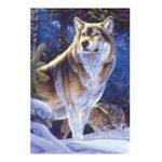 Educa Borras -  Puzzle 500 pièces loups à l'affut 8412668151512