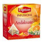 Lipton -  infusion sachets individuels dans boite carton agrume et oranger 20 sachets andalousie sachet pyramide  8722700056560